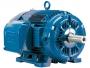 motor trifasico 20 cv 6 polos